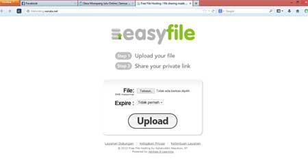 file_hosting01
